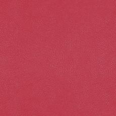 09 Triks red