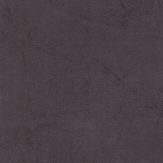Olimp Grey